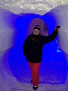 ice hotel me